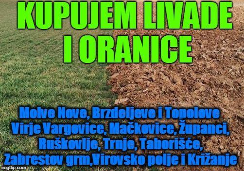 Virje, Molve, Novigrad Podravski, livade i oranice kupujem