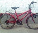 Dječji bicikl 20