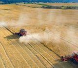 Iznajmljujem 100 rali poljoprivrednog zemljišta
