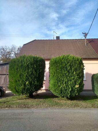 Prodajem kuću-Petrijevci(kod Osijeka)